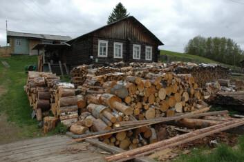 """""""VEDLAGER: De iskalde vintrene i Komi krever store lager av tørr ved. De laftede tømmerhusene, eller izbaene, er konstruert for å holde på varmen."""""""