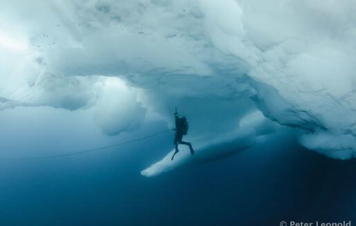 Det dype mørkeblå havet i Arktis