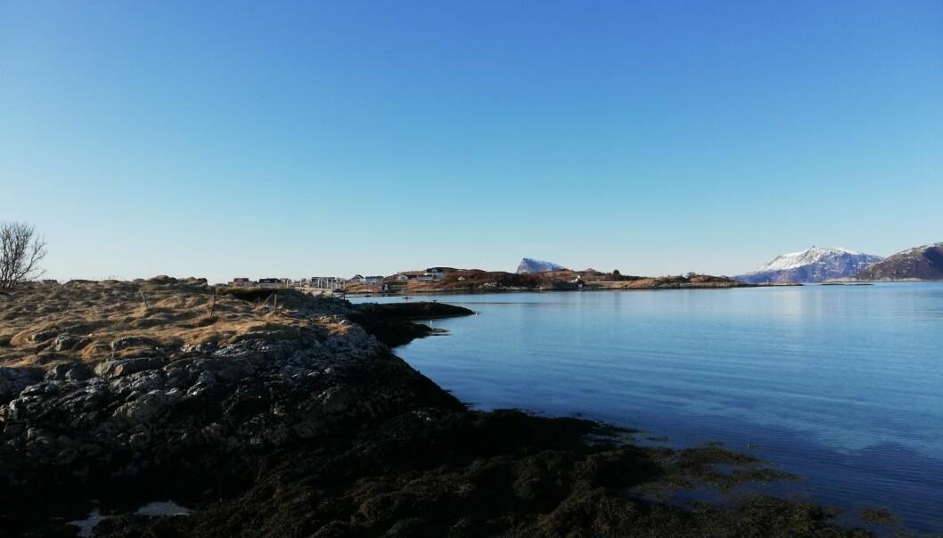 Nydeleg dag med sol er ideelt for fjernmåling. Snøen har allereie smelta, og vi kan sjå ein roleg sjø med klart vatn på Sommarøy.
