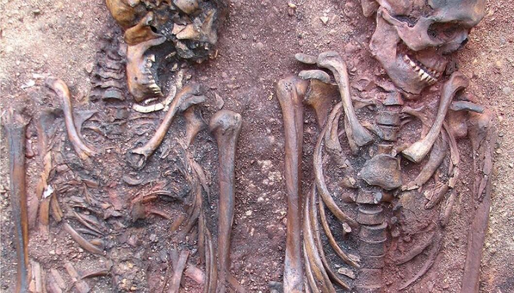 Grav 316/317. En mann og en kvinne, gravlagt samtidig. Mannen (høyre) var pakket inn da han ble gravlagt, og kan også ha hatt på seg en leirmaske. Kvinnen var dekorert med rav. Graven var også dypere enn de andre, og kan ha vært markert med en stor stein. Liv Nilsson Stutz og Lars Larsson
