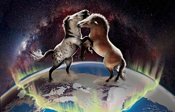 Ancient DNA reveals gene flow between Eurasian and North American horses
