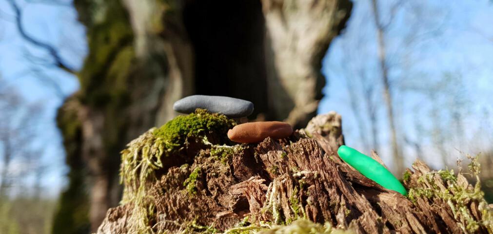 Larver av plastelina kan brukes til å finne ut hvordan ulike rovdyr jakter på mat.
