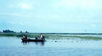 Bør lære av afrikanske fiskere