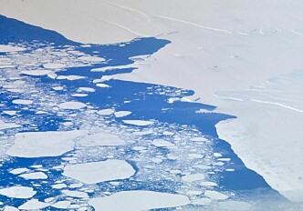 Sea level rise from melting ice could be halved this century