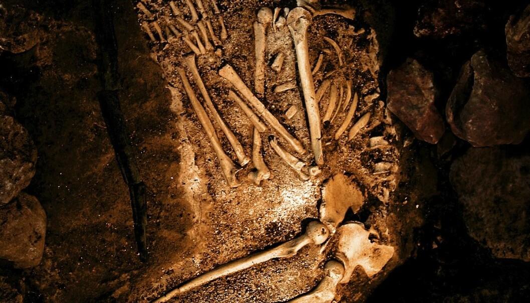 Neandertaler(Foto: iStockphoto.com)