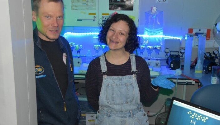 Yasemin og Mikko i sedimentfelle laboratoriet.