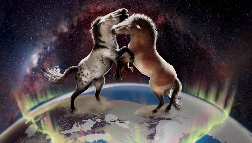Hester fra Nord-Amerika og Europa var ikke helt isolerte fra hverandre gjennom de siste en million år.
