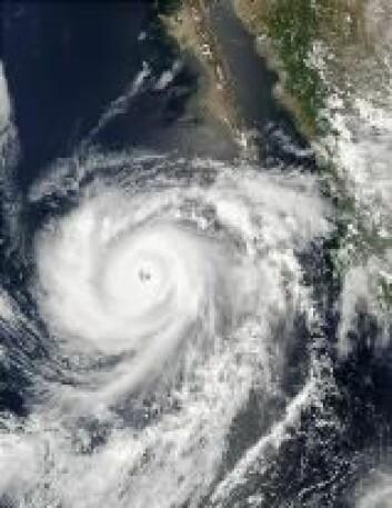 """""""Den tropiske syklon Hernan utenfor Mexico i september 2002 kom også opp i fem i styrke. Foto: NASA"""""""