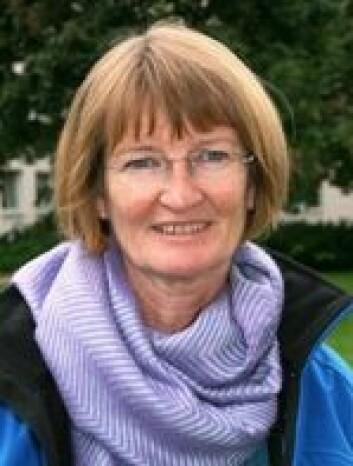 Informasjonsflyten i helsevesenet kan sammenlignes med øyhopping, mener Ragnhild Hellesø.