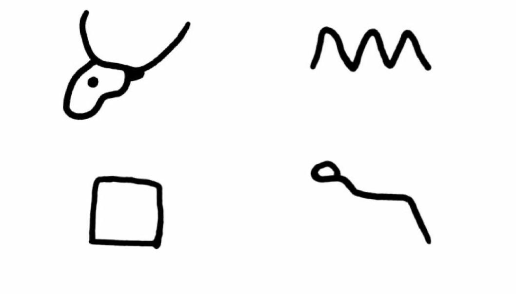 """Den første lyden i <span class=""""italic"""" data-lab-italic_desktop=""""italic"""">Aleph </span>(okse) er utgangspunktet for bokstaven A. Snu oksehodet opp ned, så ser du A-en. <span class=""""italic"""" data-lab-italic_desktop=""""italic"""">Beth</span> (huset) er utgangspunktet for bokstaven B. Det tegnet gruvearbeiderne i Serabit el-Khadim som en firkant. Den første lyden i det bølgende vannet (<span class=""""italic"""" data-lab-italic_desktop=""""italic"""">mayim</span>) ble til bokstaven M. Den første lyden i slangen (<span class=""""italic"""" data-lab-italic_desktop=""""italic"""">nahash</span>) ble til bokstaven N. Dette geniale prinsippet fra det lille gruvesamfunnet i ørkenen i Sinai for 4000 år siden, er det altså som kan ligge bak de 29 bokstavene vi bruker i det norske alfabetet i dag."""