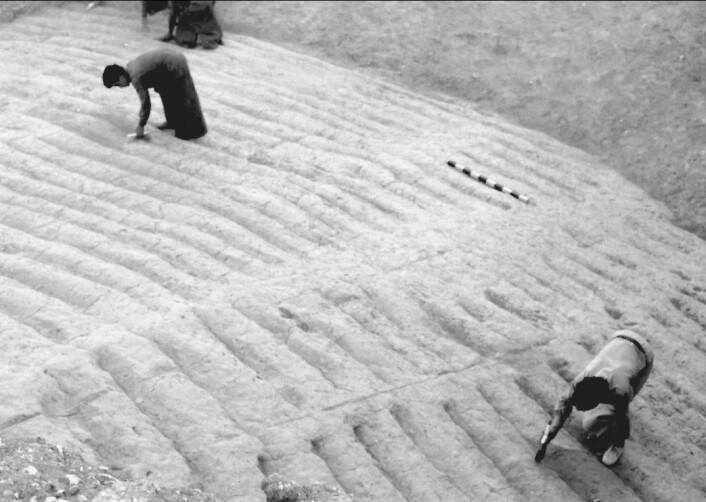 Fra utgravningen av de hvite trinnene. Haugen ville vært svært synlig i landskapet rundt med den hvite fargen.