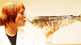 Vil utdanne fremtidige havbruk-professorer