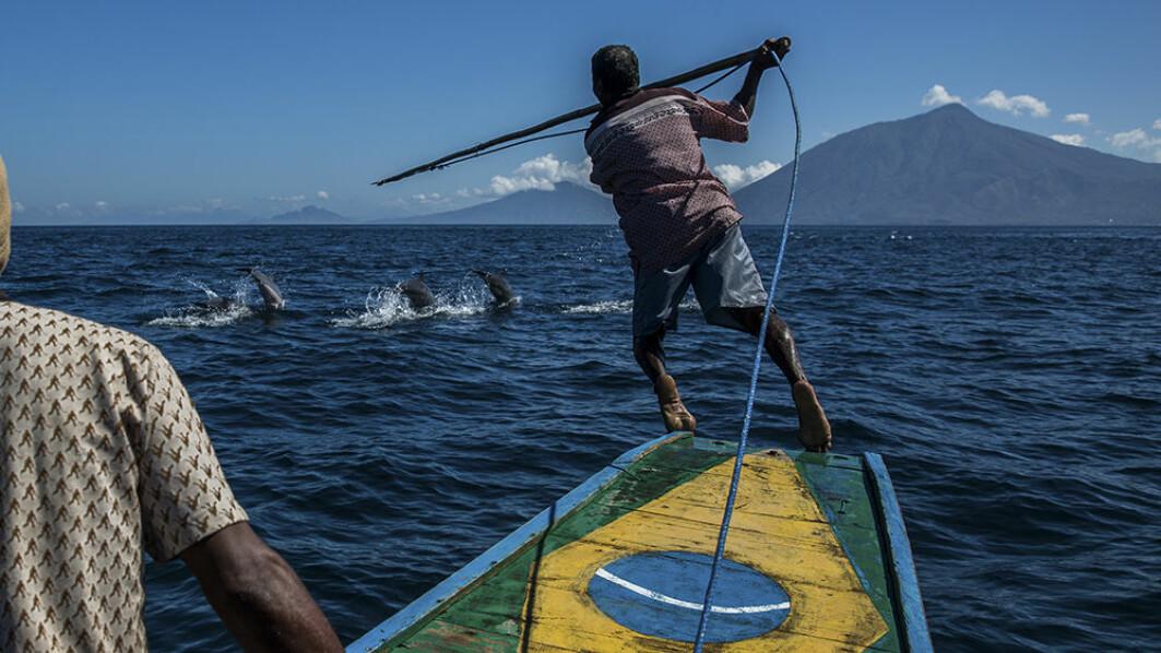 Hvalfangere i Indonesia må ta stilling til hva som er det riktige forholdet mellom menneske og hval.