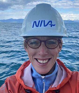Seniorforsker Hilde Trannum ved NIVA har de seneste årene fulgt nøye med på bunnfaunaens tilstand i Grenlandsfjordene.