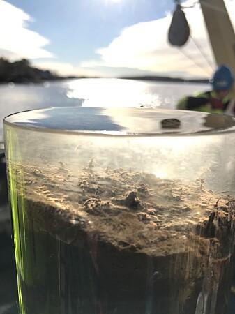 Sjøbunnen langs norskekysten er tilført miljøgifter fra ulike kilder gjennom mange år. En såkalt kjerneprøve brukes for å vurdere utviklingen over tid.