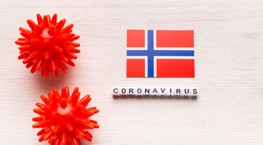 Statsforvalterne har hatt en viktig rolle under pandemien