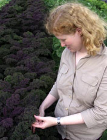 """""""- Forsiktig grilling av grønnsaker ved bruk av aluminiumsfolie bidrar til å holde på grønnsakenes sunne innhold. Også mange kålvekster passer til grilling, sier Anne-Berit Wold."""""""