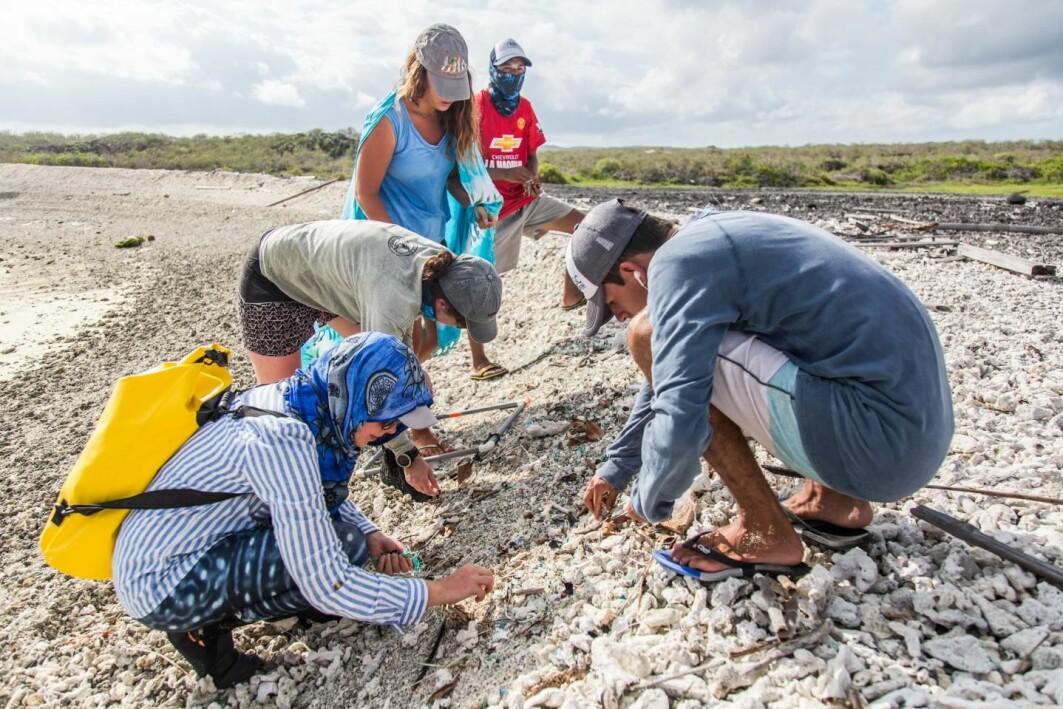 Forskere har undersøkt hvor mye plast det er på Galápagosøyene som ligger 97 mil vest for Sør-Amerika. Her samler de inn prøver på en strand på øya San Cristobal.