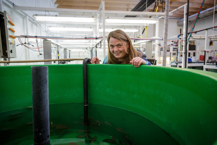 Senioringeniør Reidun Bjelland arbeidet med luse-tilvenningen på Havforskningsinstituttets stasjon i Austevoll.