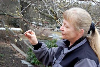 Kristina Bjureke ved Naturhistorisk museum