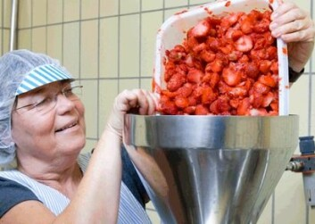 Berit Karoline Martinsen har produsert syltetøy av mange ulike sorter jordbær og bringebær. (Foto: Kjell J. Merok)
