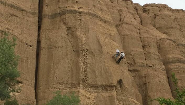 For å samle inn prøver, var det bare å sikre seg og begynne å klatre!