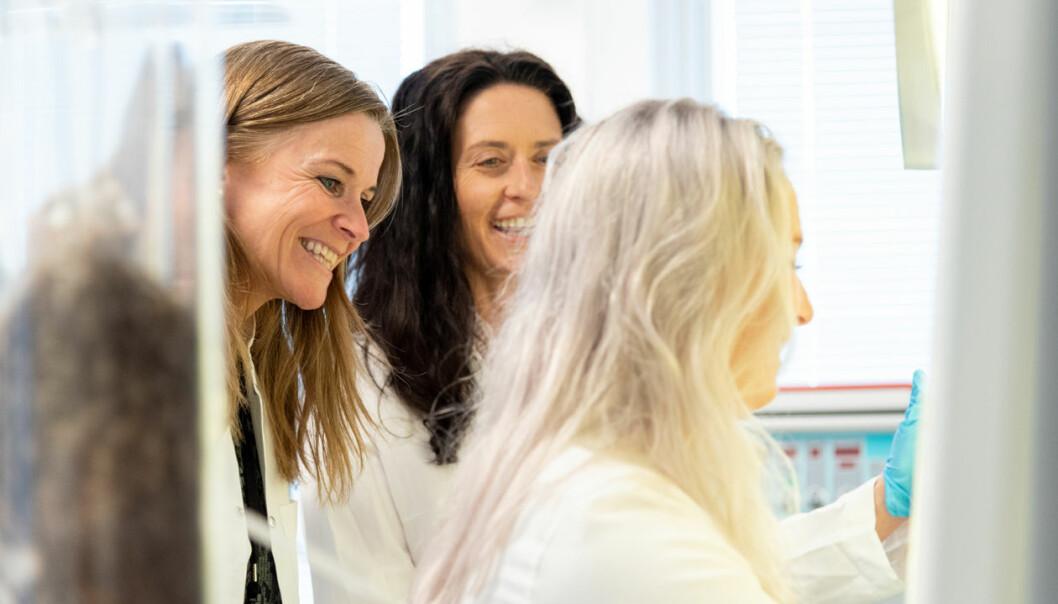 Fjær i hatten: Stipendiat Ingvild Buran Kroglund (til venstre), biveileder Courtney Waugh og masterstudent Sara Eide kan konstatere at forsøket med å dyrke celler hentet fra fjær ble vellykket.