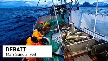 Forståelsen av havet i havnasjonen Norge er lav, både blant folk og beslutningstakere