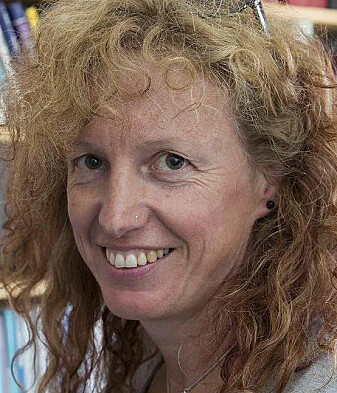 Prof. Gunhild Hoogensen Gjørv is employed at the Centre for Peace Studies at UiT, and contributed to the report while engaged in a project at the Peace Research Institute Oslo (PRIO).