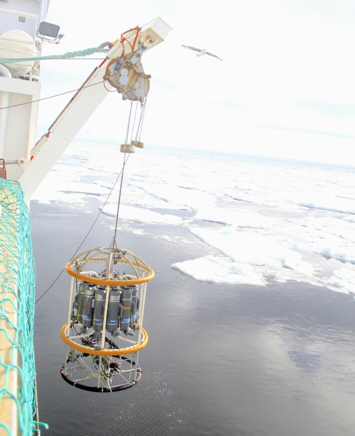 CTD instrument på vei ned i vannet ved siden av sjøis.