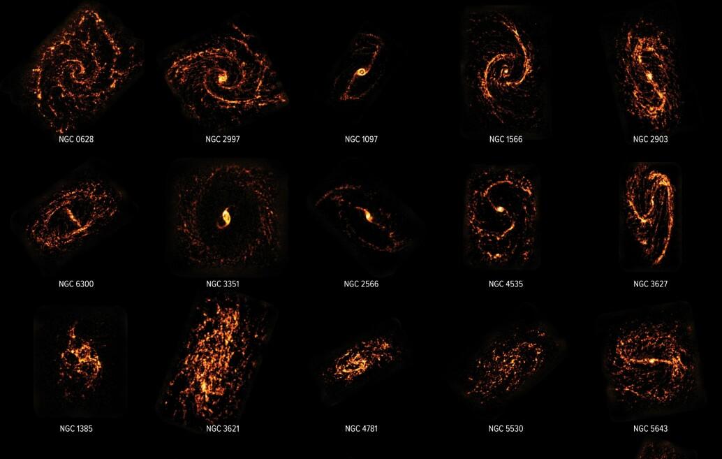 Dette er bare noen av galaksene som har blitt kartlagt av ALMA-teleskopet. De lyse feltene viser steder hvor stjerner blir født. Galaksene er sett med radiobølger, og ikke lys som er synlig for oss.