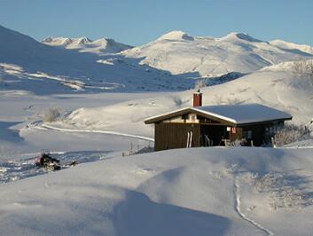 Felststasjonen i Øvre Heimdalen i vinteridyll. Foto: John E. Brittain, NHM
