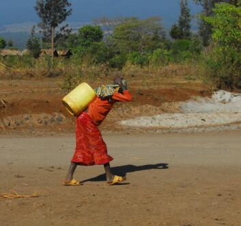 Vann må ofte bæres lange strekninger av kvinner. (Foto: Shutterstock)