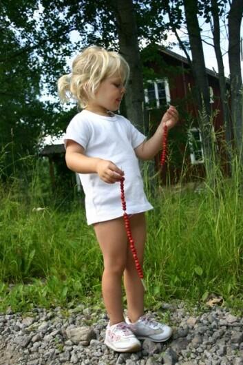 Oppå Lauvåsen veks det jordbær, fine jordbær, raue jordbær. (Illustrasjonsfoto: www.colourbox.no)
