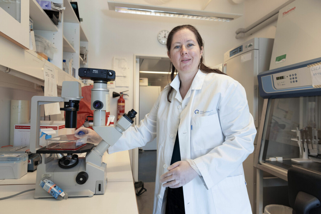 Vaksineforsker Gunnveig Grødeland ved avdeling for immunologi og transfusjonsmedisin, Universitetet i Oslo. Fotografert på vaksinelaberatoriet. Grødeland har ikke vært med på den nye forskningen.