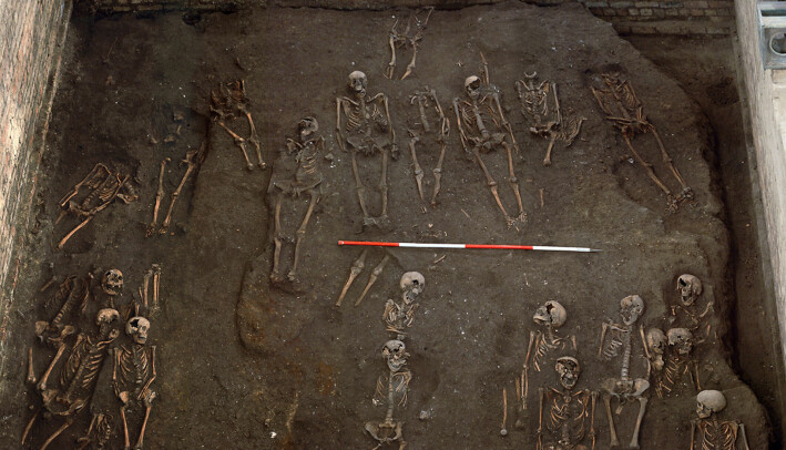 Er det noen skjeve tær her? Her ser du noen av skjelettene forskerne undersøkte. Disse ligger på en gammel kirkegård i Cambridge i England.