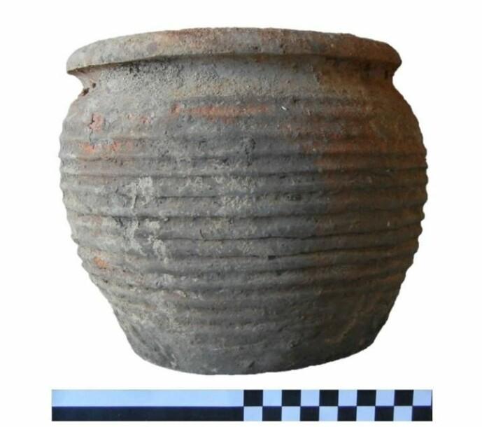 Et eksempel på et keramisk kokekar, brukt i forskningen.