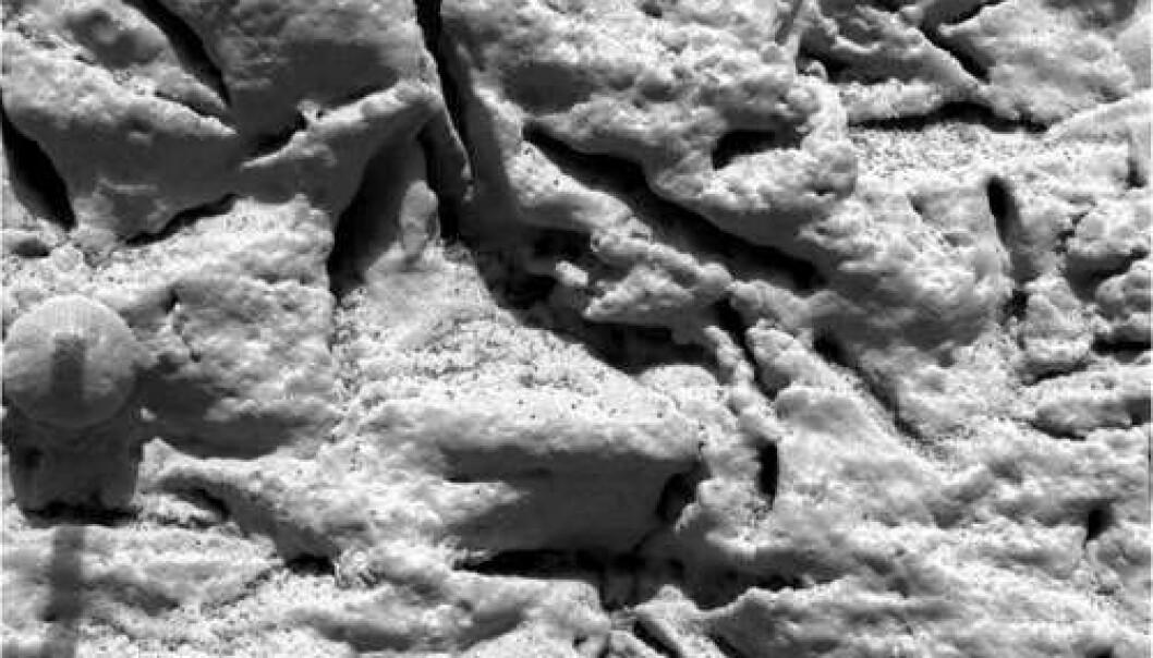 Spenning rundt nye bilder fra Mars