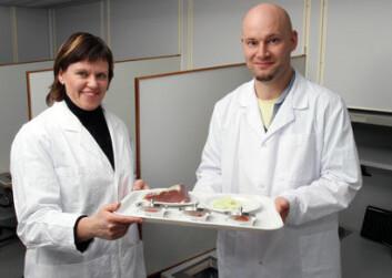 Josefine Skaret og Morten Thyregod Paulsen tester en ny sensorisk metode på spekeskinker. (Foto: Kjell J. Merok)