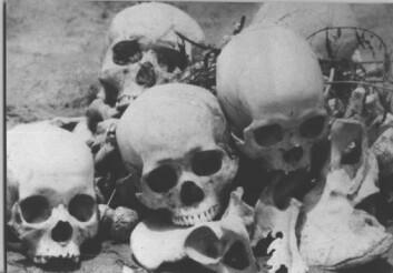 """""""Hodeskaller fra dødsmarkene i Kambodsja."""""""