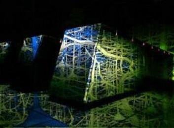 """""""En kunstners fremstilling av datamaskinen som skal simulere menneskehjernen. (Illustrasjon: Brain Mind Institute/IBM)"""""""