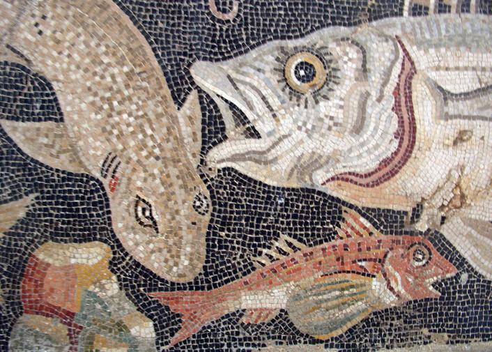 Romersk mosaikk som viser fiskeslag fra Middelhavet. (Foto: Wikimedia Commons)