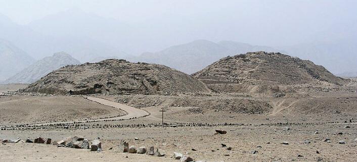 Caral-pyramidene i Supe-dalen i Peru. (Foto: Wikimedia commons, lisens her)