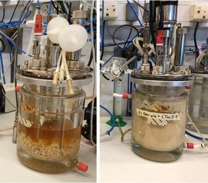 Forskningssenter for miljøvennlig energi (FME) Bio4Fuels ved NMBU har som mål å bruke biprodukter og avfall fra norsk skogindustri til å produsere biodrivstoff.