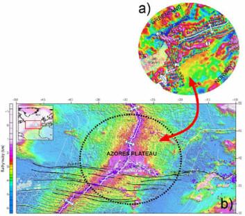"""""""a) Platerekonstruksjon av Norge, Grønland og Jan Mayen mikrokontinent ved spredningsanomali C21 (ca 50 millioner år). Figuren viser også et trippelpunkt mellom to magnetiske (magmatiske) komplekser (1 og 2) langs Vøring-marginalhøyden og Traill Ø intrusjonskompleks (3). b) Den tidlige geodynamiske situasjonen ved Jan Mayen ligner mye på Asorenes trippelpunktet (rygg-rygg-transform) hvor smeltestrømmer fra spredningsryggen til de nærliggende havbunns-bruddsoner. Sirklene på det batymetriske kartet viser dagens jordskjelvaktivitet. Målingene ved Jan Mayen er utført av TGS, mens NGU har gjort målingene i Barentshavet."""""""