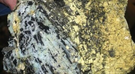 Alunskifer - bergartenes sorte får
