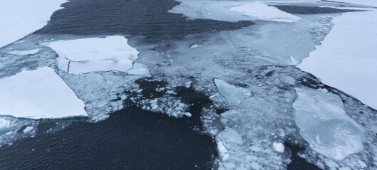 Detecting mineral oil slicks in ice covered seas from space
