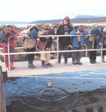 """""""Det finnes flinke Montessorielever her til lands også. Disse barna fra Hamnvåg Montessoriskole ble Årets Nysgjerrigper 2006."""""""