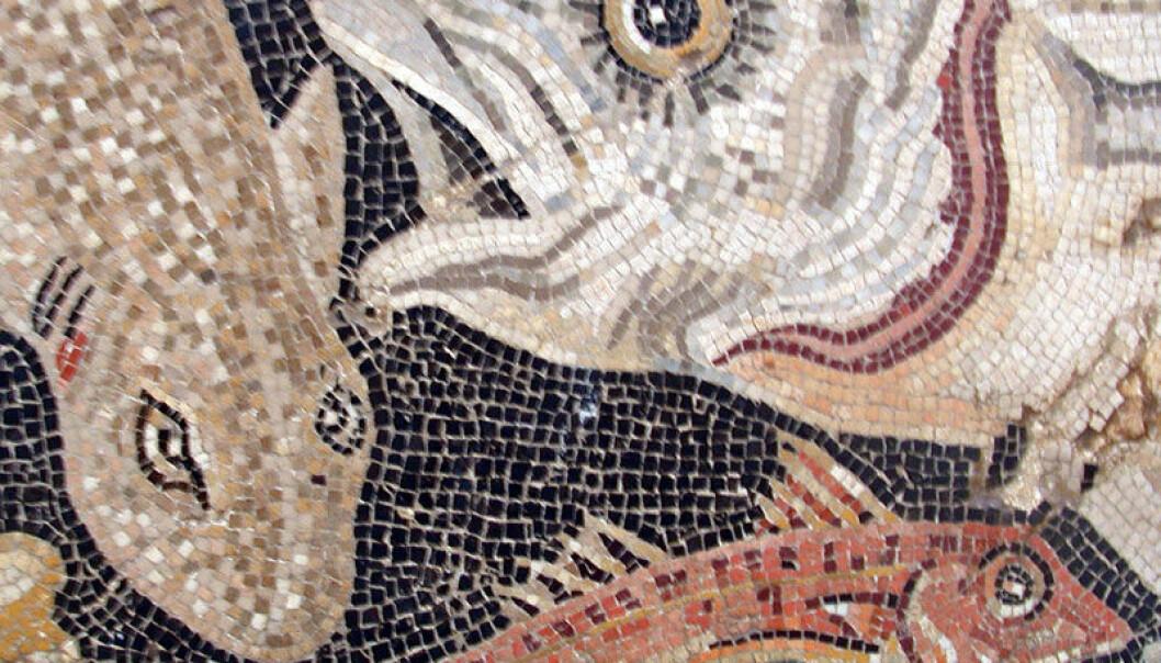Romers mosaikk av fisk. (Foto: Wikimedia Commons)