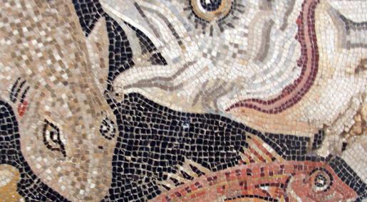Romerne kan ha fraktet levende fisk med båt